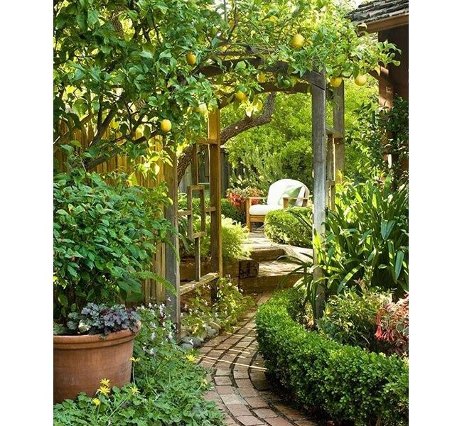 10 Gardens From Pinterest We Know Mom Will Love