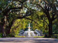 The Complete Guide to a Savannah Honeymoon
