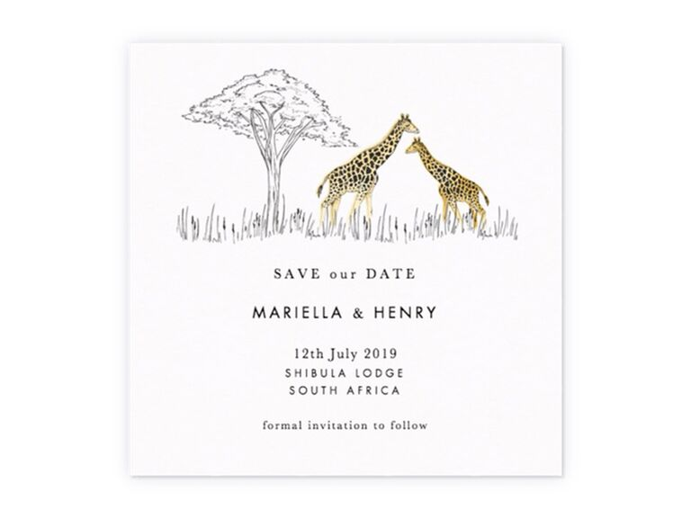 Giraffes and tree graphic with minimalist type on white background