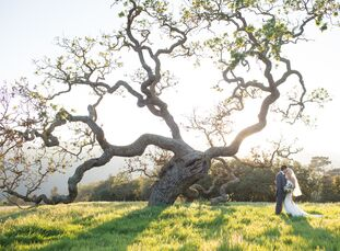 This garden-inspired wedding, perched on top of a hill in the vineyards surrounded by rolling hills, will have anyone dreaming of romance. Jamie Raun