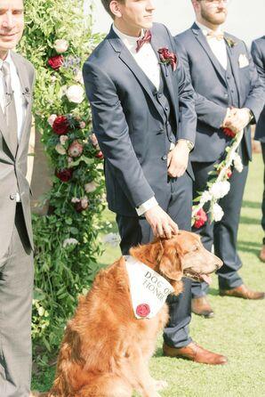 Pet of Honor at Wedding at Bella Collina in Orlando, Florida