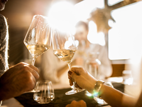 Couple cheersing wine glasses