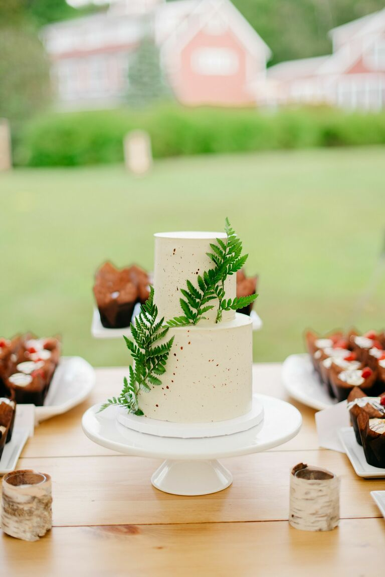 Rustic two-tier wedding cake with fern decorations