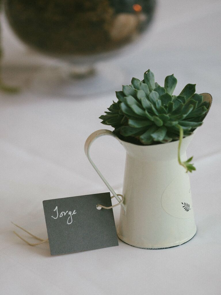 Sustainable succulent wedding favors.