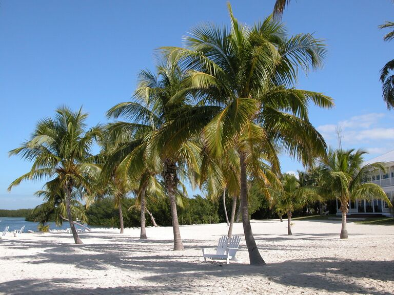 US wedding destination Florida Keys