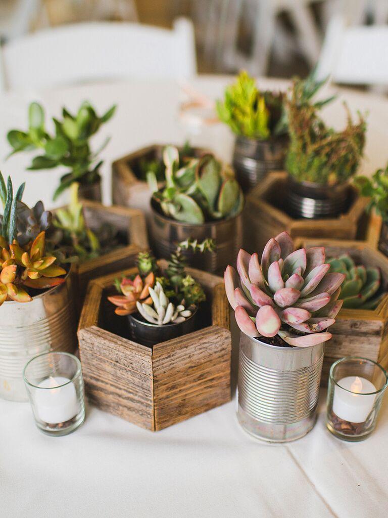 DIY potted succulent wedding reception centerpiece idea