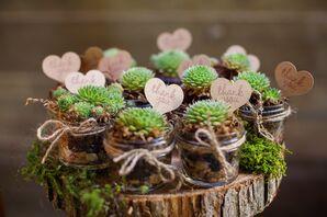 Potted Succulent Wedding Favor