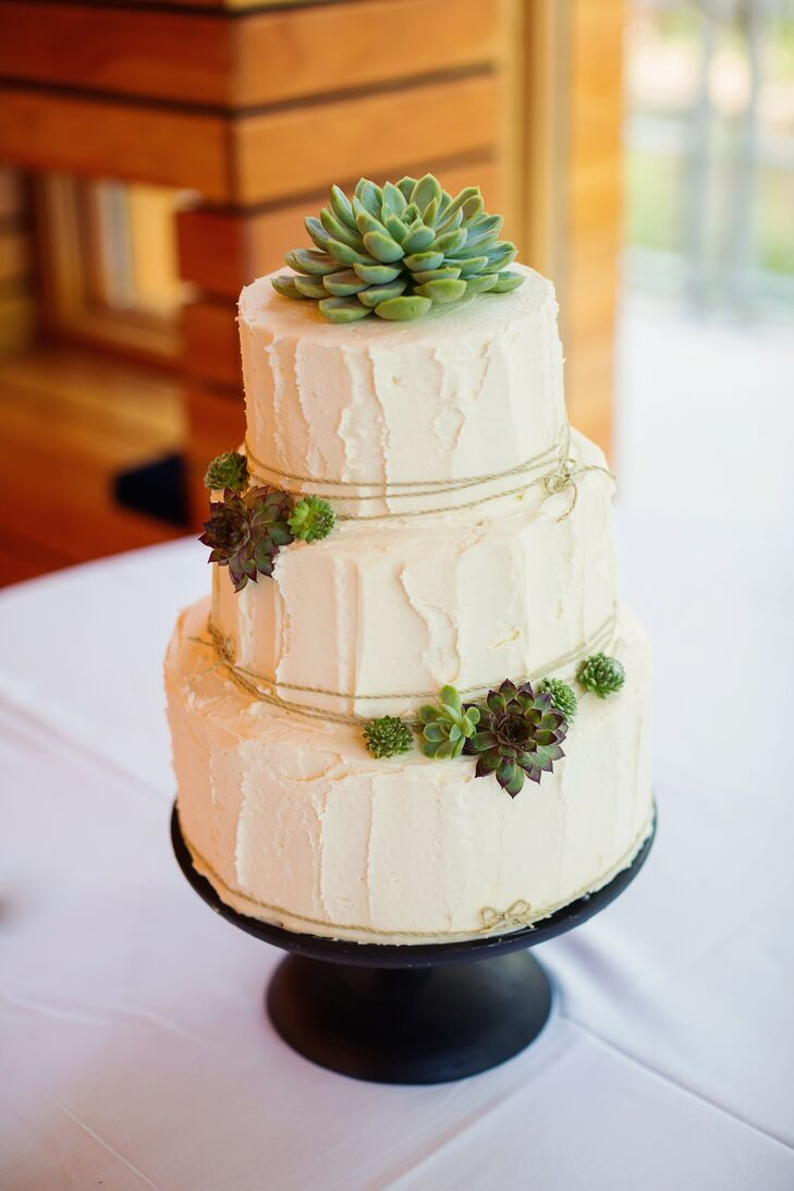 A single succulent topped Alyssa and Andrew's three tier, buttercream cake courtesy of The Cakabakery.