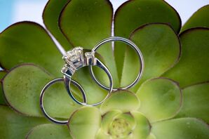 Wedding Rings on Green Succulent
