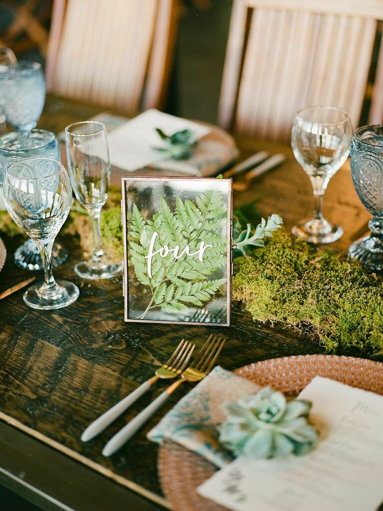 Pressed fern in frame as table number