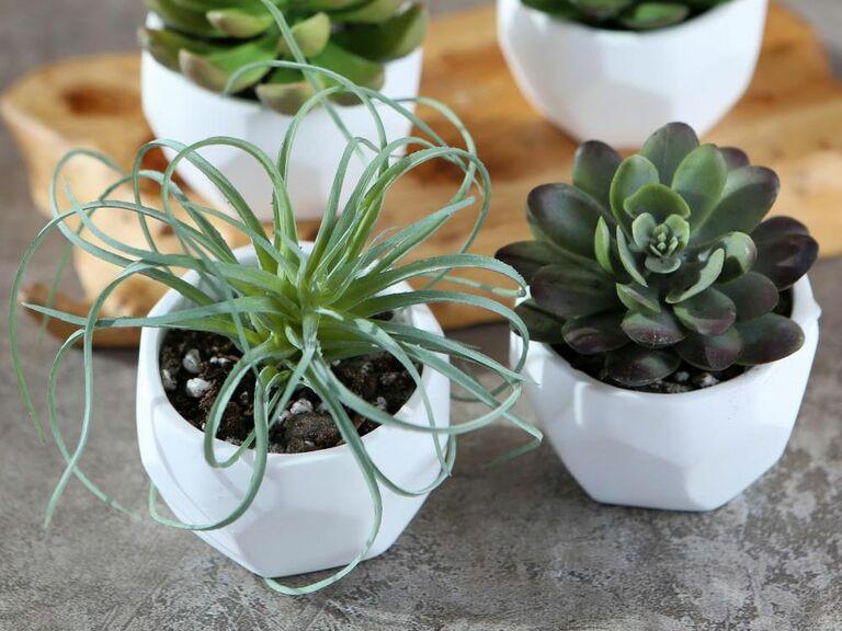 modern geometric planters