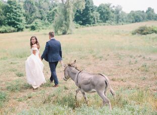 Liana grew up on a working farm that dates back to 1790, so when Callum proposed, an elevated backyard wedding at the Hudson Valley property was in or