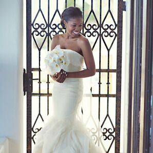 Strapless Vera Wang Gown