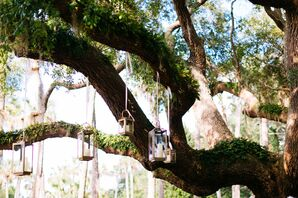 Candle Lanterns Hanging from Tree Branches