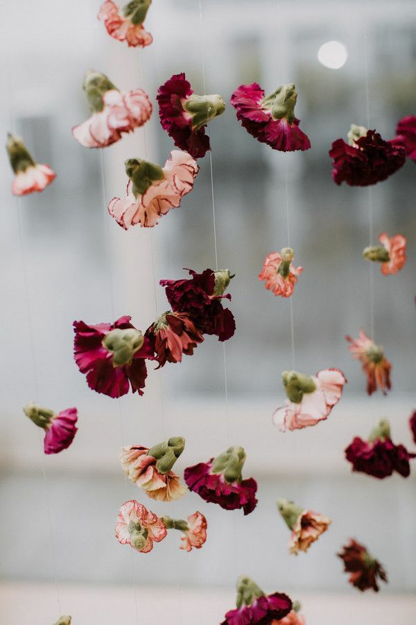 Purple carnations hanging from string