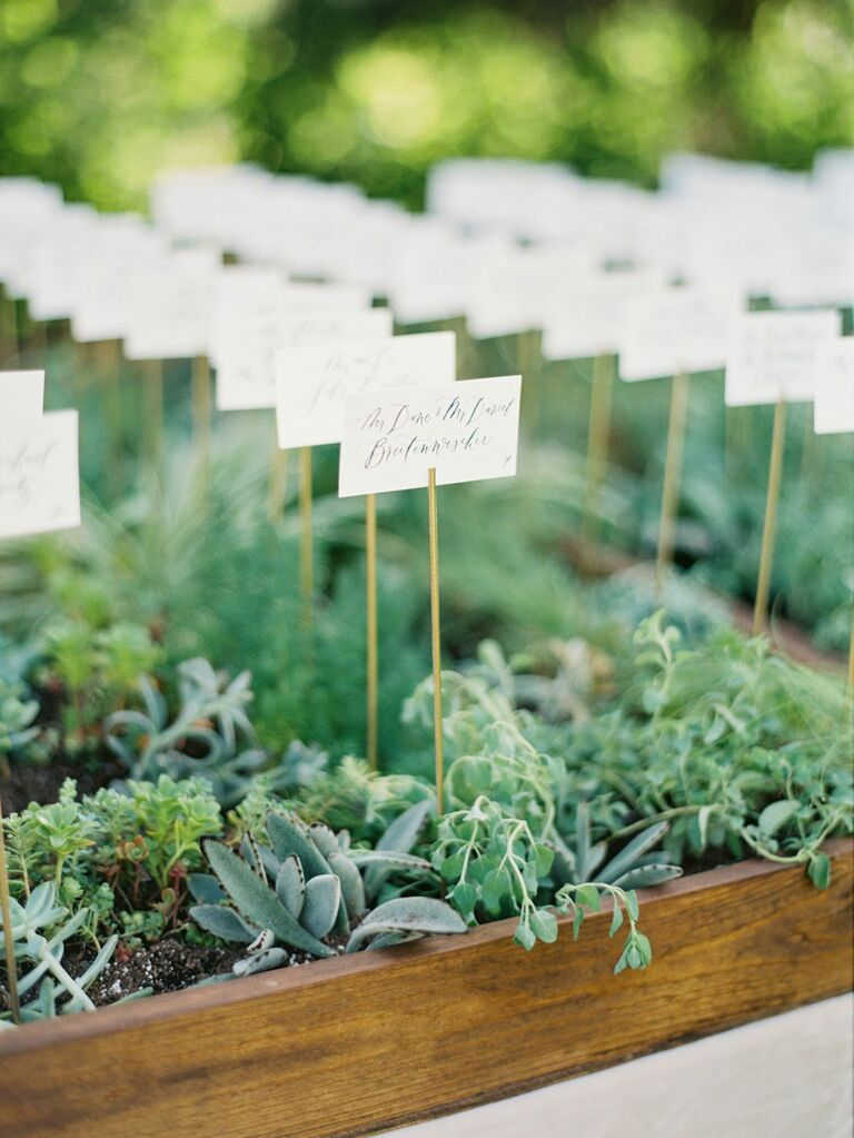 Terrarium greenery place cards at wedding reception