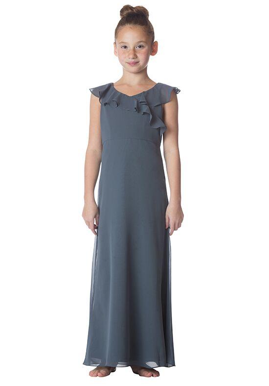 Bari Jay Bridesmaids 1753-JR V-Neck Bridesmaid Dress