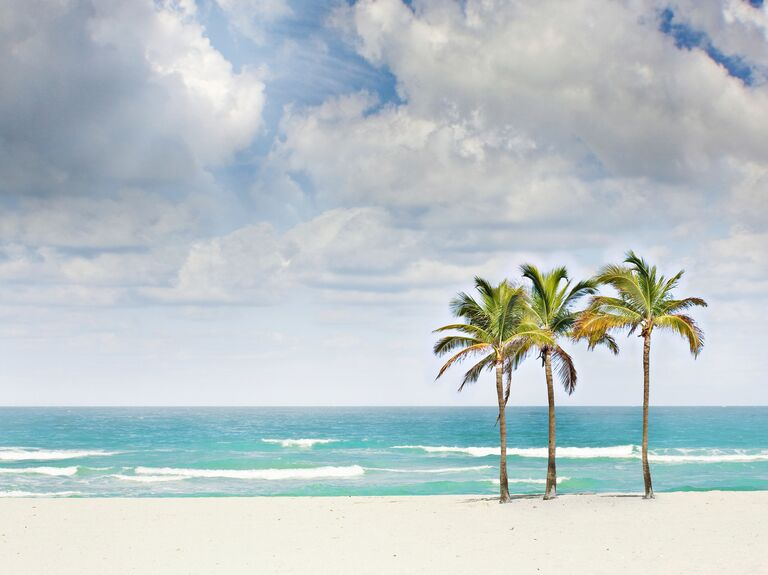 US wedding destination Miami, Florida