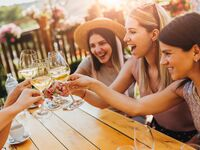 Friends toasting wine at bridal shower brunch