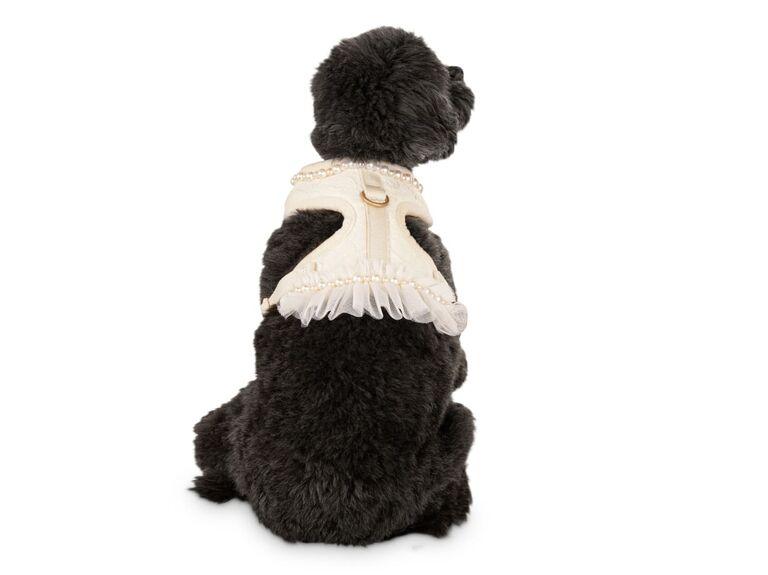 Elegant white harness dog wedding accessory