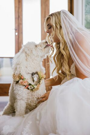 Bride Kissing Dog at Wedding at The Faulkner in Jackson, Mississippi