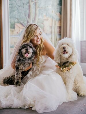 Bride Posing With Dogs During Wedding at The Faulkner in Jackson, Mississippi