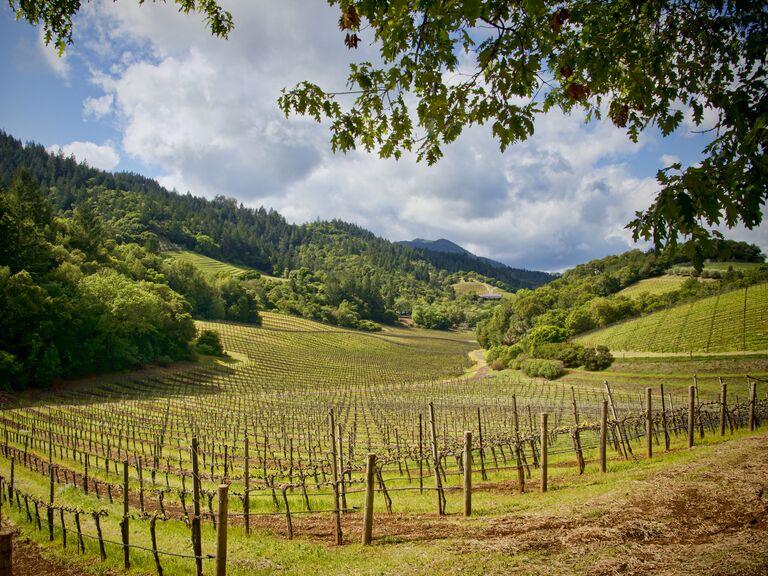 Napa Valley honeymoon destination