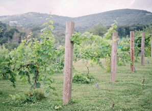 Mountainside Vineyard Ceremony at Banner Elk Winery