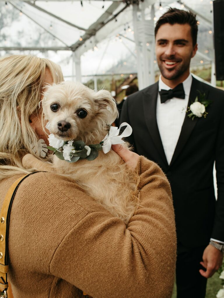 brittany snow husband wedding
