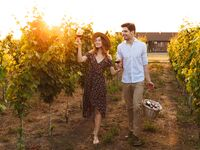 Couple drinking wine and walking through vineyard with picnic basket