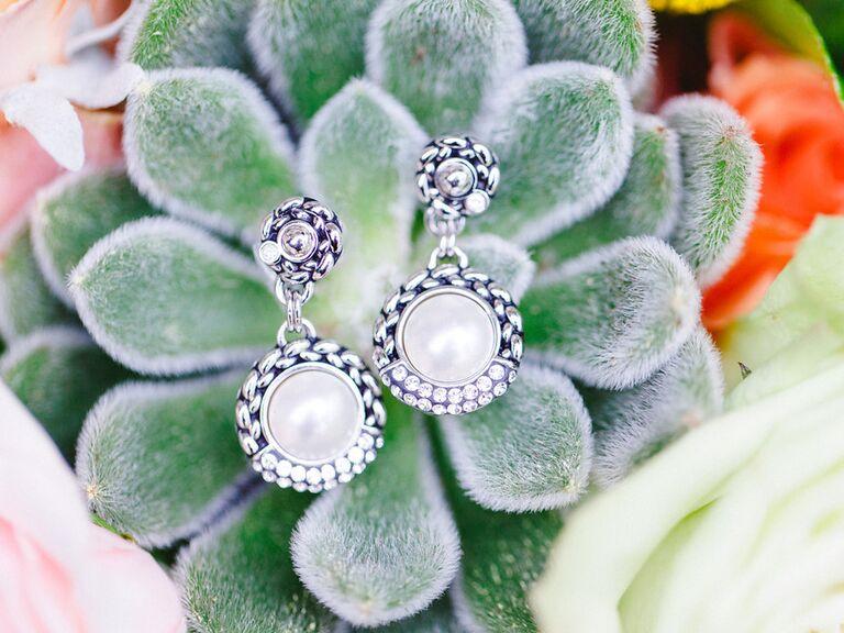 Earrings on succulents