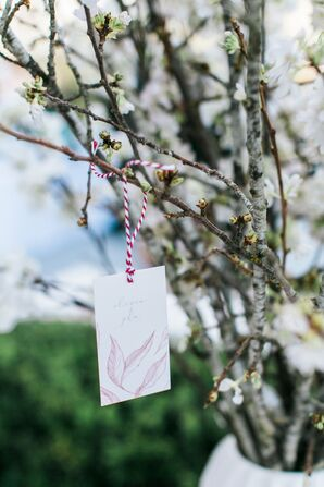 Escort Cards Tied on Branches with Twine