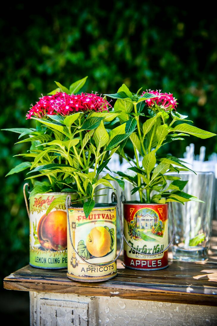 At cocktail hour, vintage canned fruit cans made vintage-inspired planters.