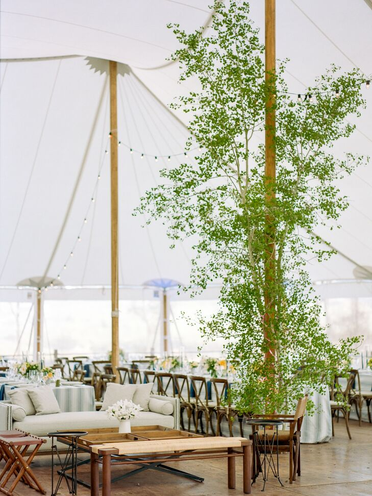 Rustic Tented Reception with Tree and Lounge Furniture