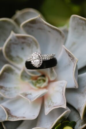Wedding Rings Resting on a Succulent