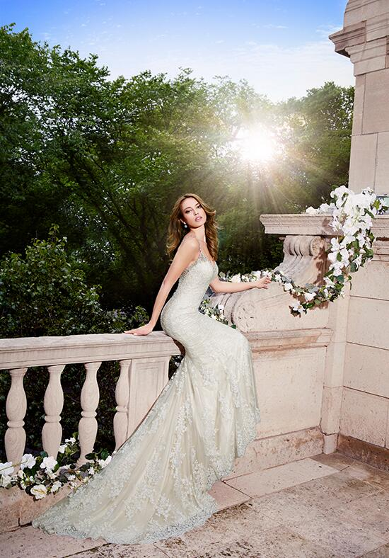 Moonlight Collection J6401 Wedding Dress photo
