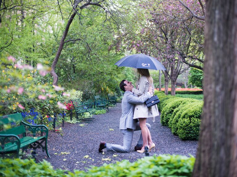 Marriage proposal during the spring