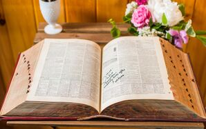 Vintage Dictionary Guest Book