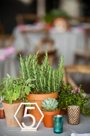 Geometric Table Number with Succulent and Herb Centerpieces