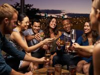 group of friends toasting at engagement party