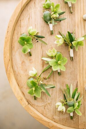 Organic, All-Green Boutonnieres