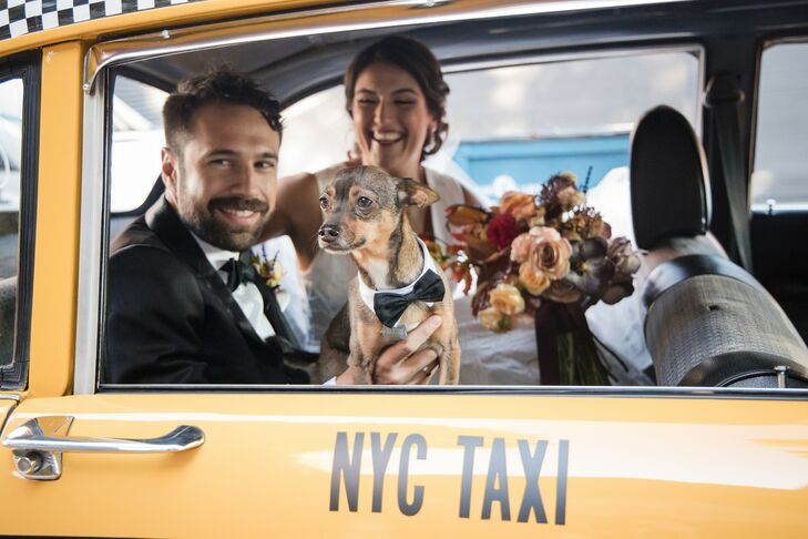 Couple in Yellow Taxicab With Dog in New York