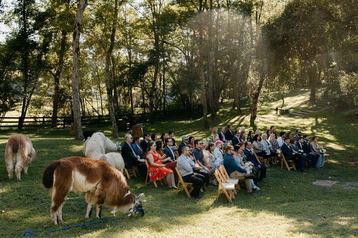 Wedding Ceremony with Llamas at Rustic North Carolina Wedding