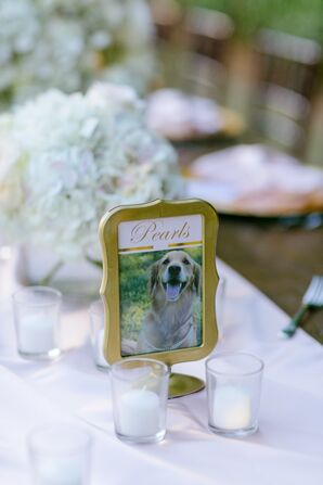 Pet-Inspired Table Number With Pearls