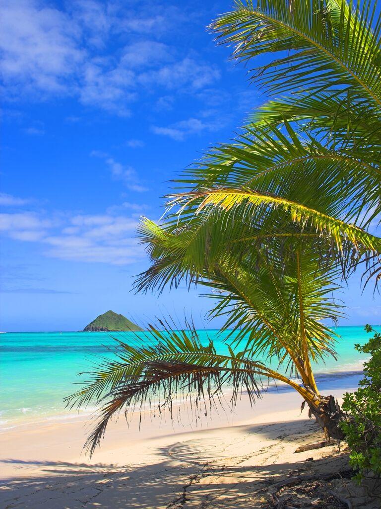 Caribbean wedding destination: Bermuda