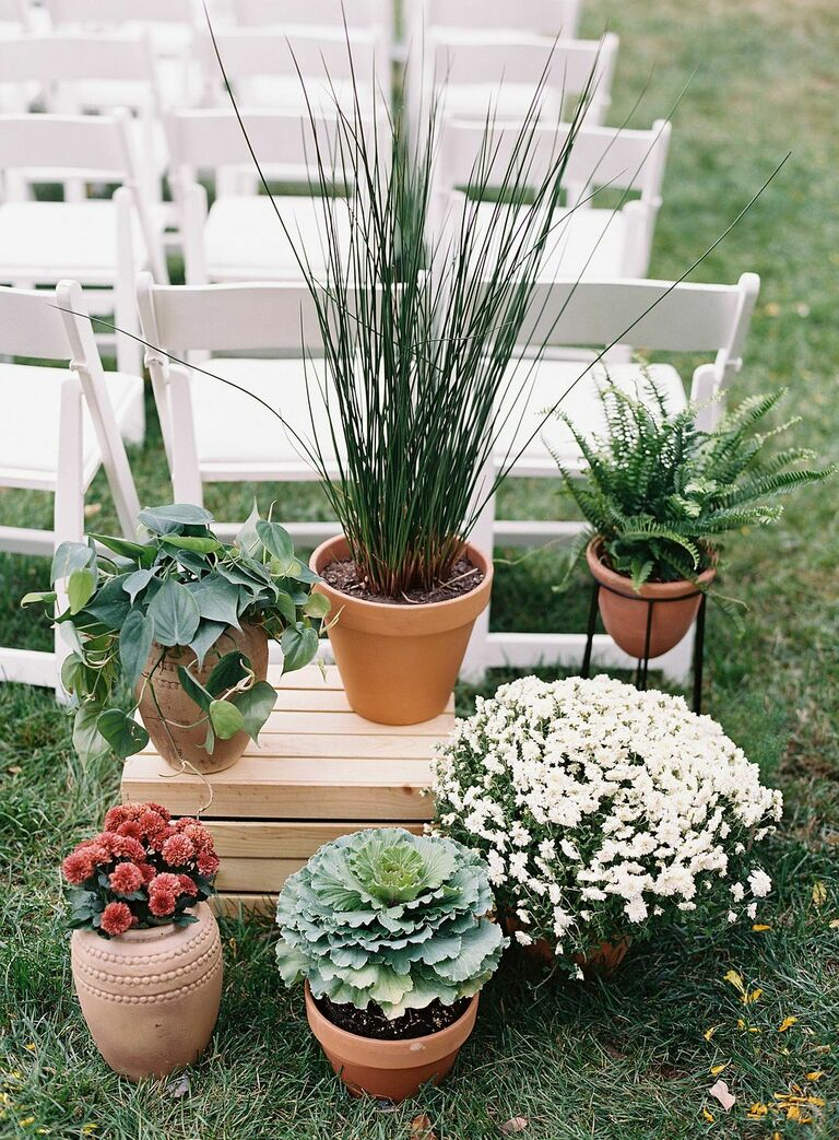 Grouping of plants in terracotta pots decorating ceremony aisle