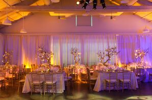 Gold Accents with Purple Lighting