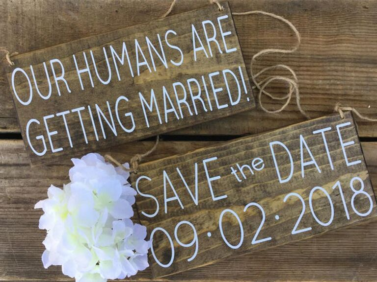 Two hanging wooden signs with 'Our humans are getting married!' and 'Save the date' in simple white type