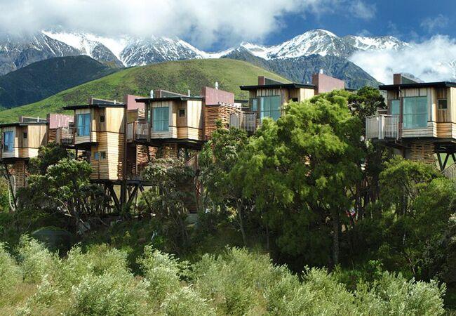 Hapuku Lodge & Treehouse