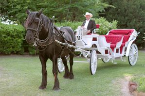 Horse and Carriage at East Texas Wedding